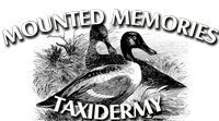 Mounted Memories Taxidermy | Owatonna, Minnesota